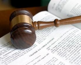 Relatório dos advogados – Janeiro de 2015